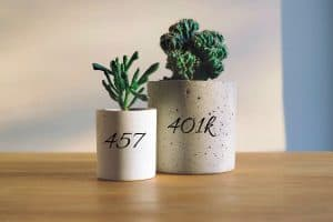 Read more about the article Can I Max Out My 401k and 457?